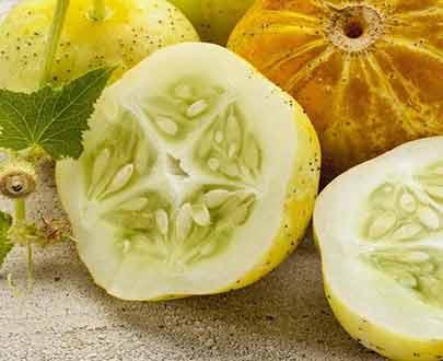 خیار لیمویی